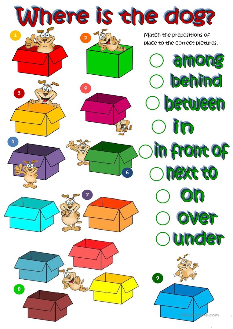 264 Free Esl Place Prepositions Worksheets