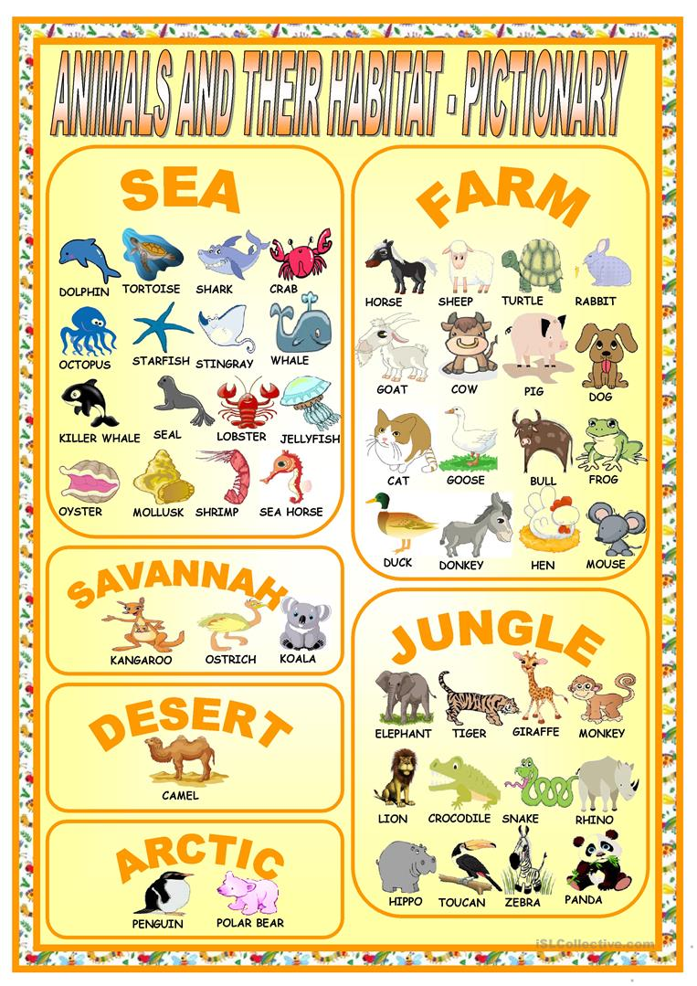 19 Free Esl Habitat Worksheets