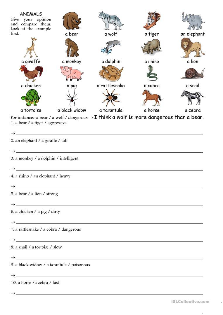 45 Free Esl Comparing Worksheets