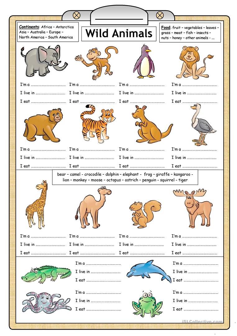 81 Free Esl Wild Animals Worksheets
