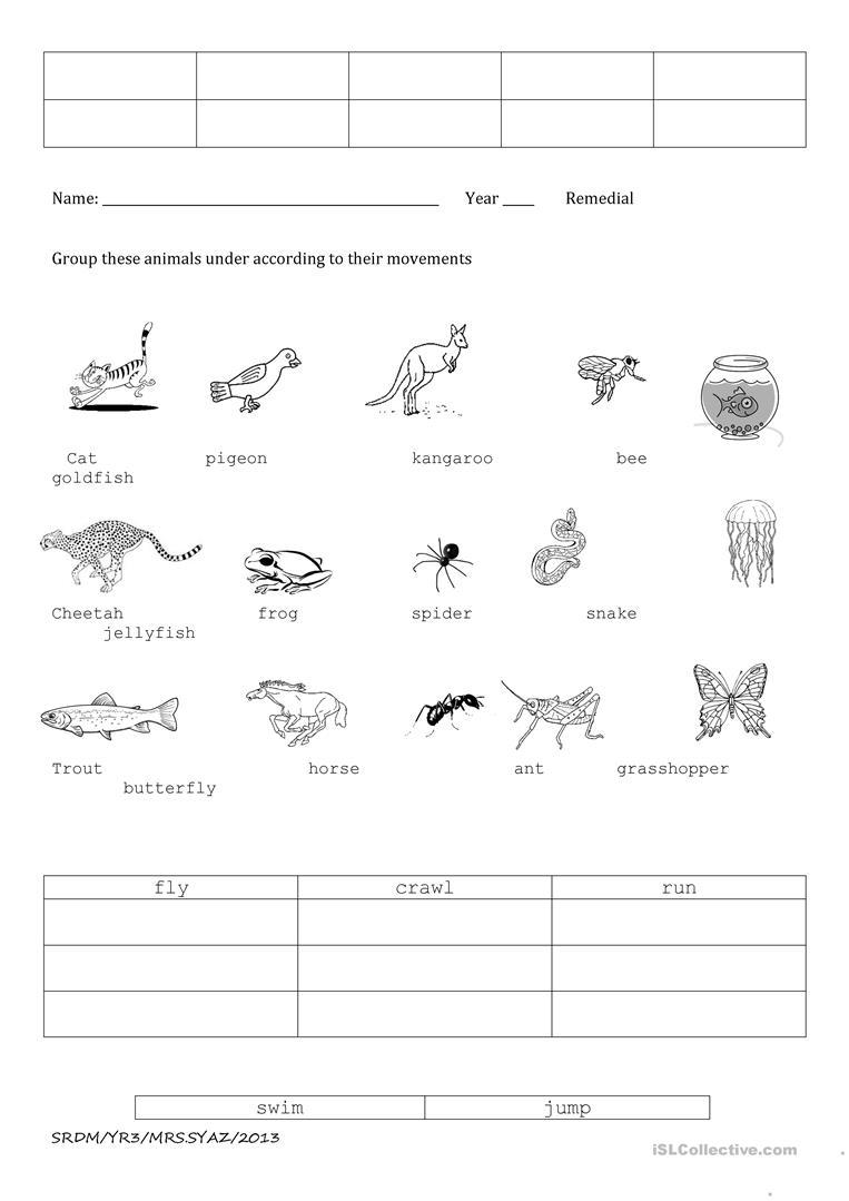 Animal Movements Worksheet