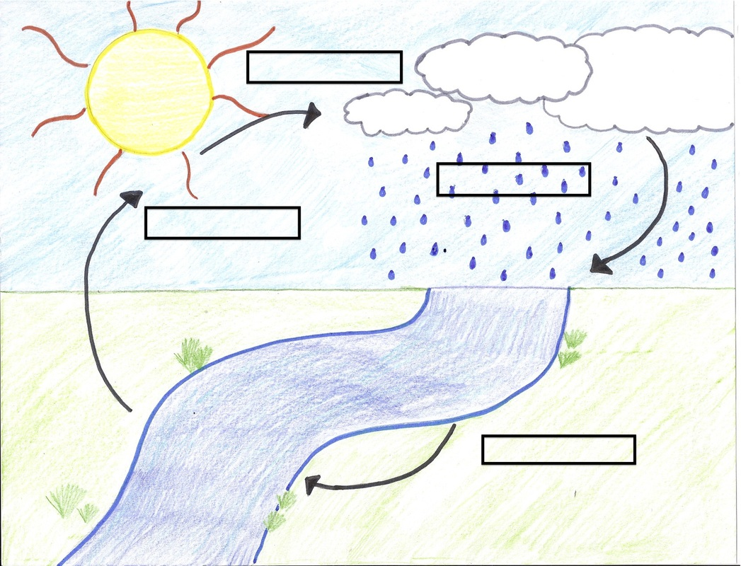 Water cycle diagram worksheets ccuart Gallery