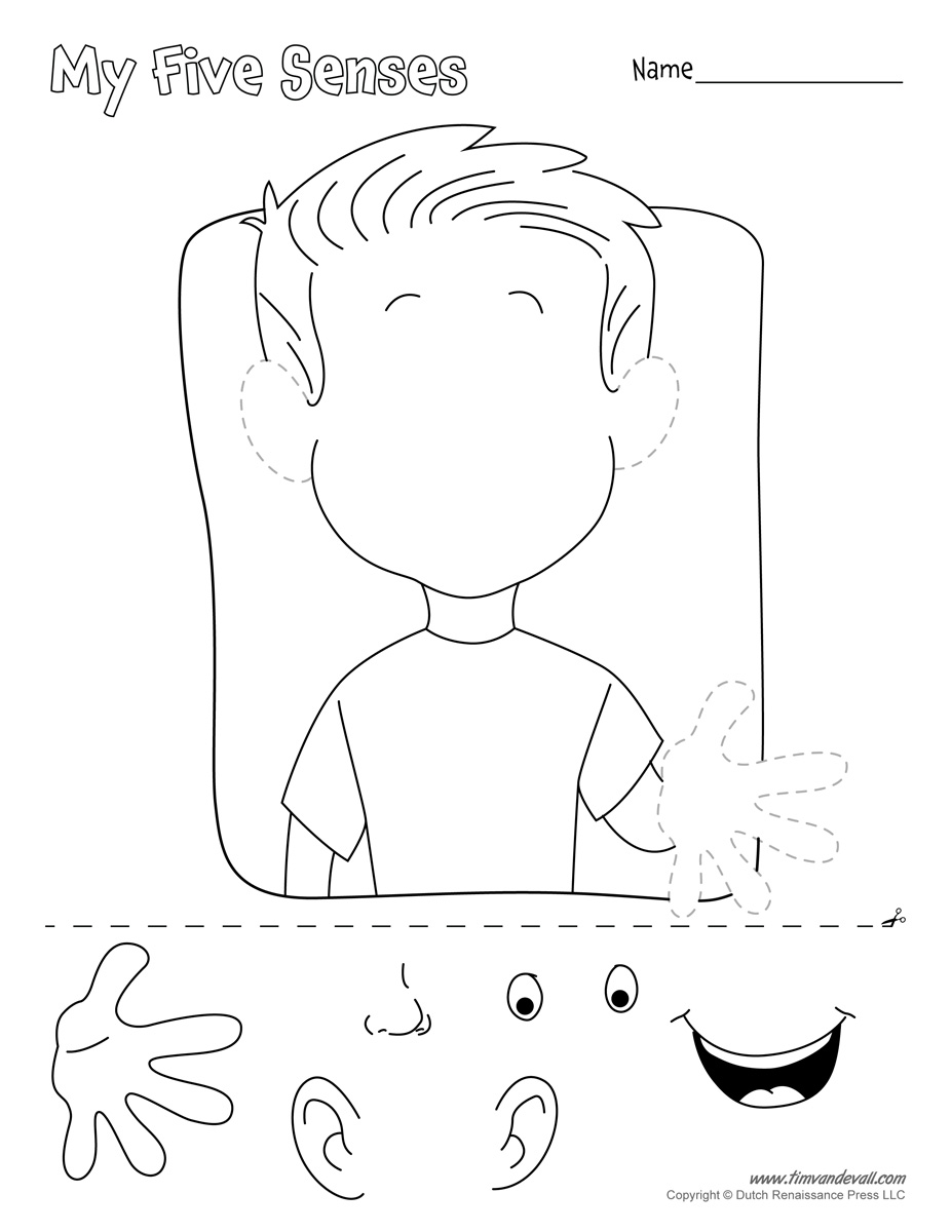 worksheet Free Cut And Paste Worksheets five senses cut and paste worksheets