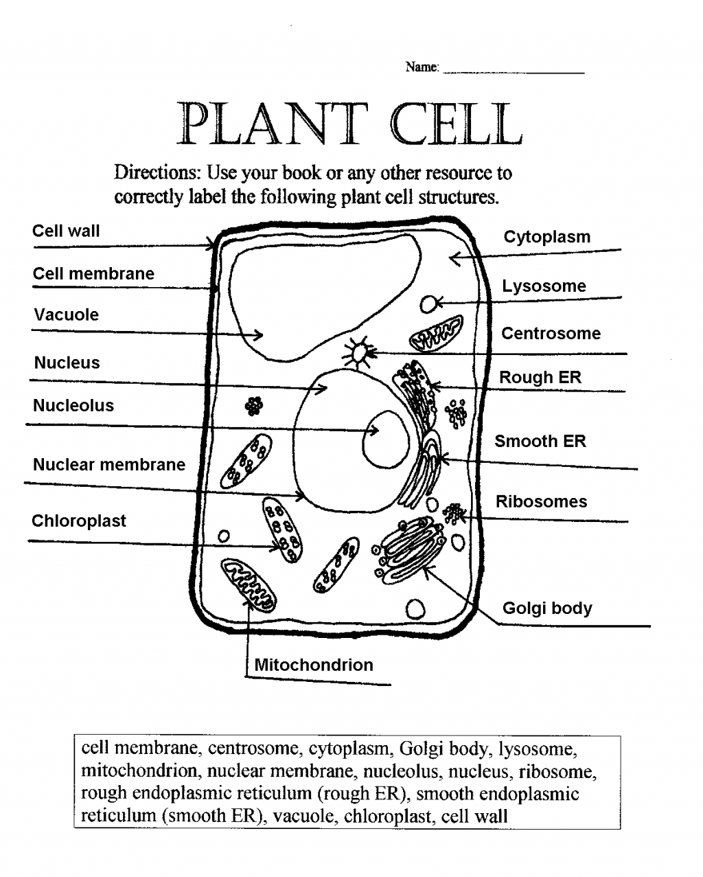 Plant Cell Labeling Worksheet Free Worksheets Library