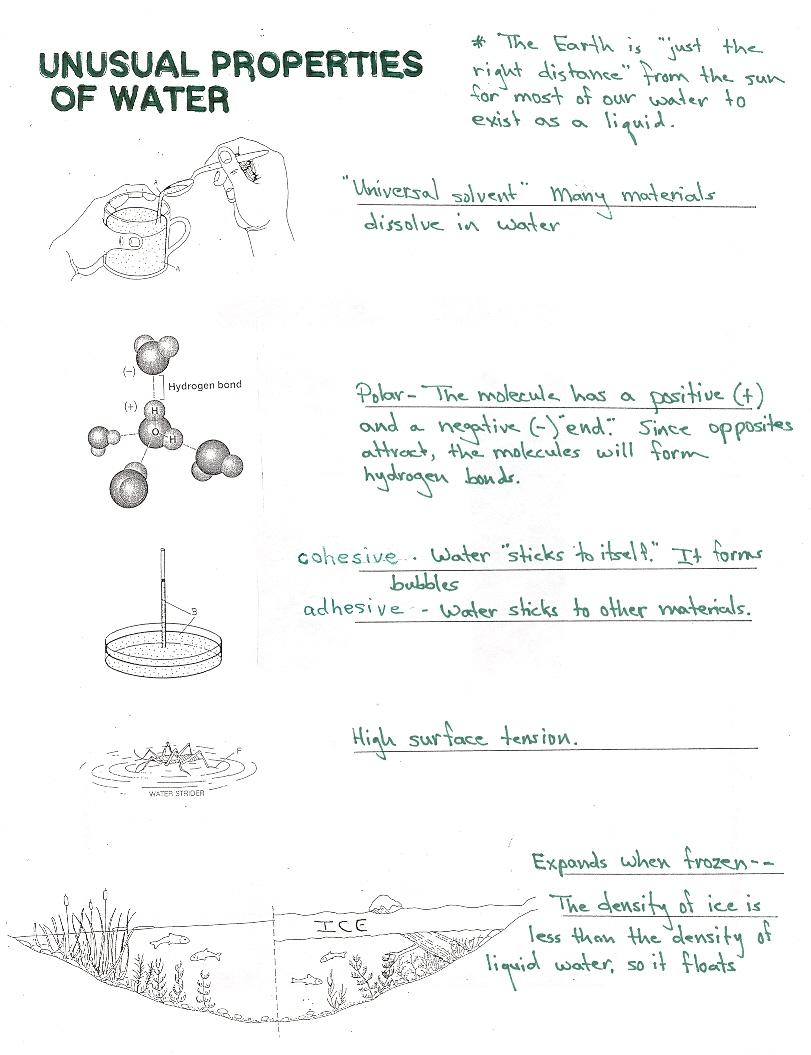 Properties Of Water Worksheet Free Worksheets Library