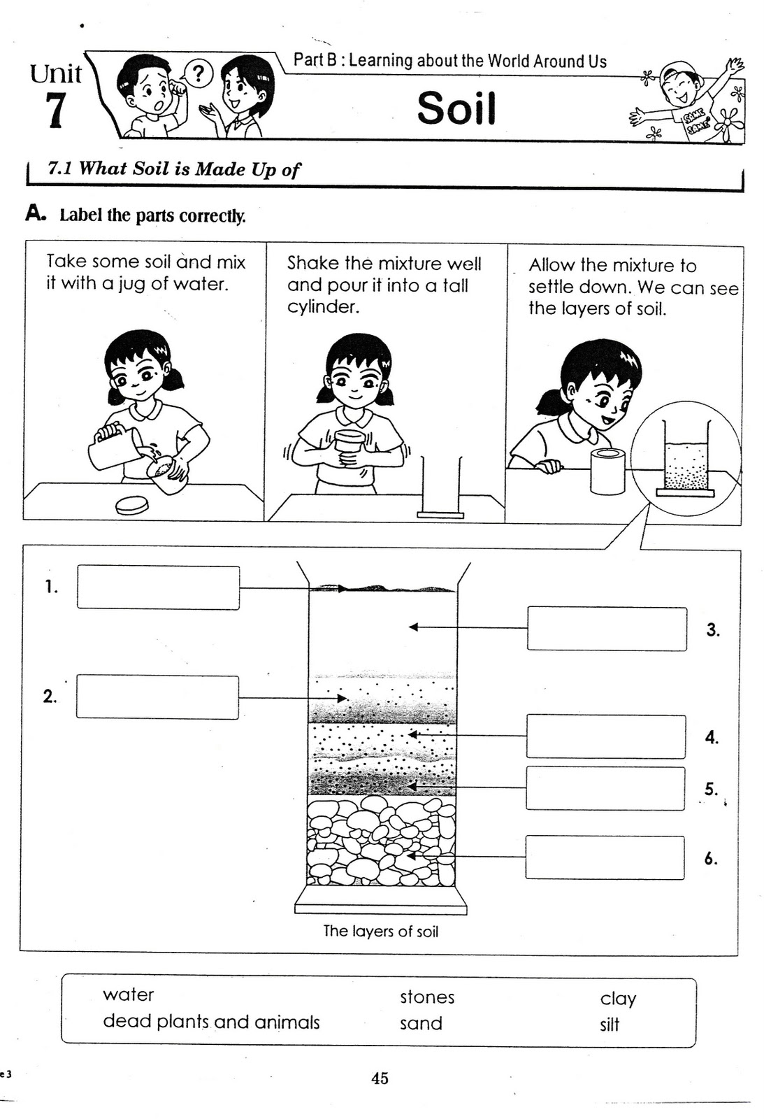 Worksheet  Soil Worksheets  Mytourvn Worksheet Study Site