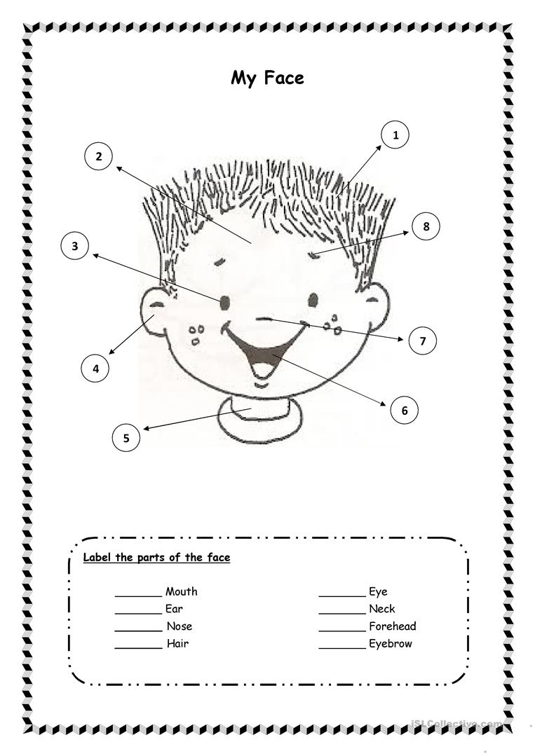 Face Worksheet For Kindergarten