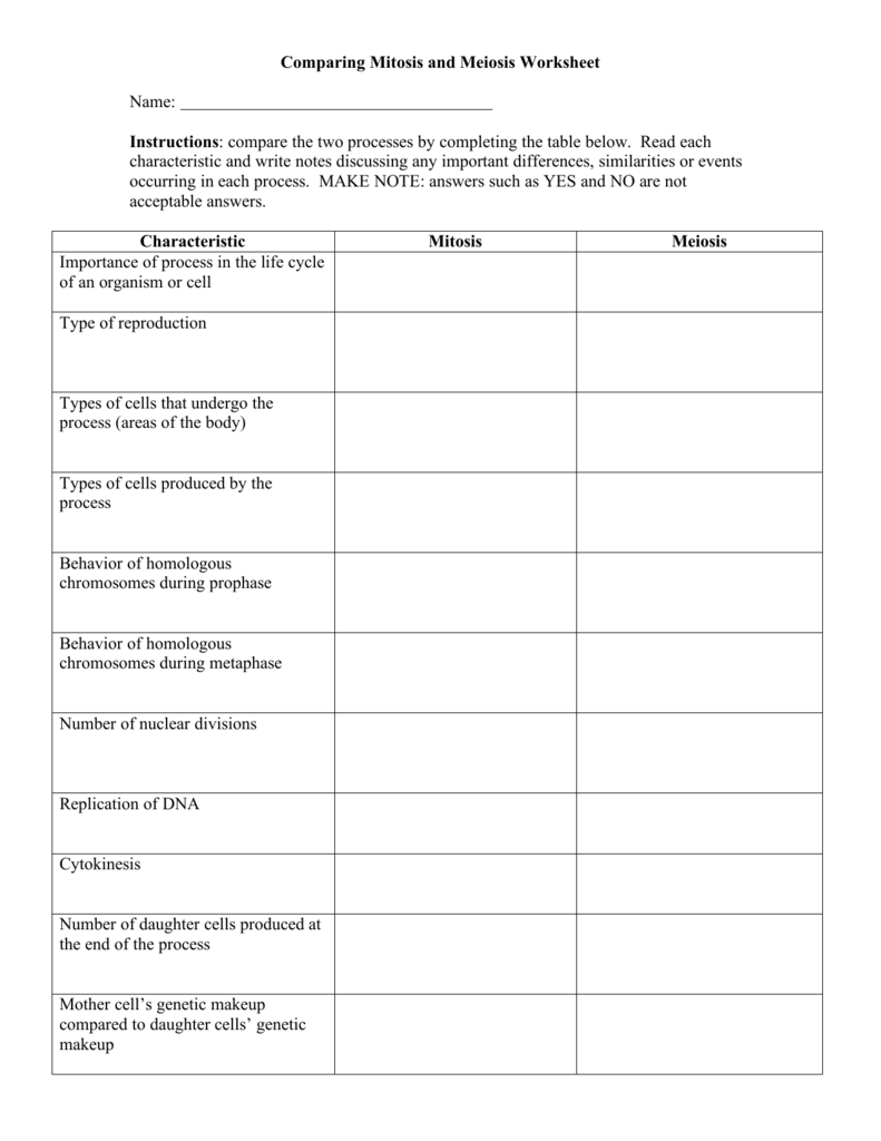 Comparing Mitosis And Meiosis Worksheet Answers – Worksheets Samples