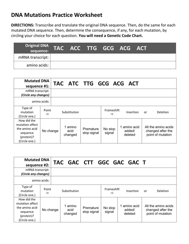 Dna Practice Worksheet Worksheets For All