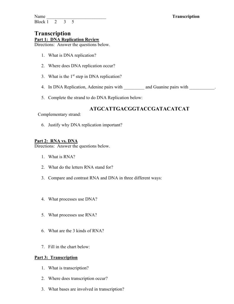 Dna Transcription And Translation Worksheet Worksheets For All