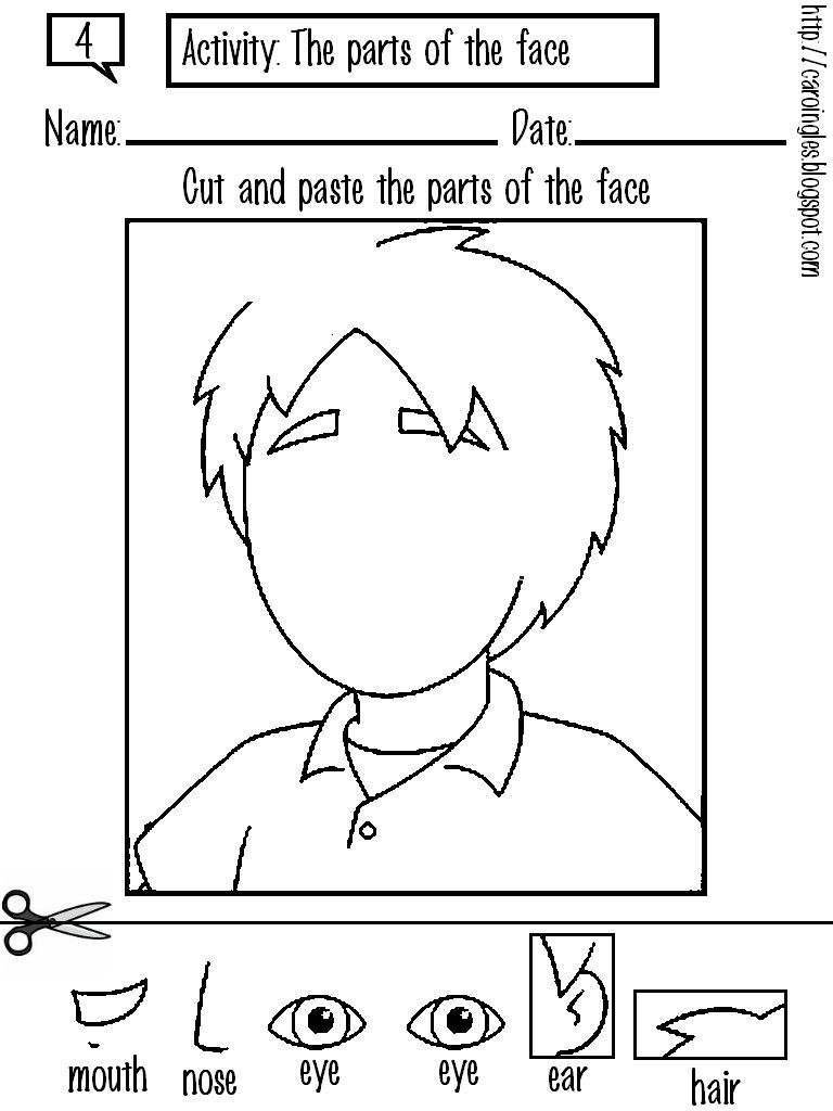 Face Body Parts Worksheets Cool Preschool Worksheets For Kids
