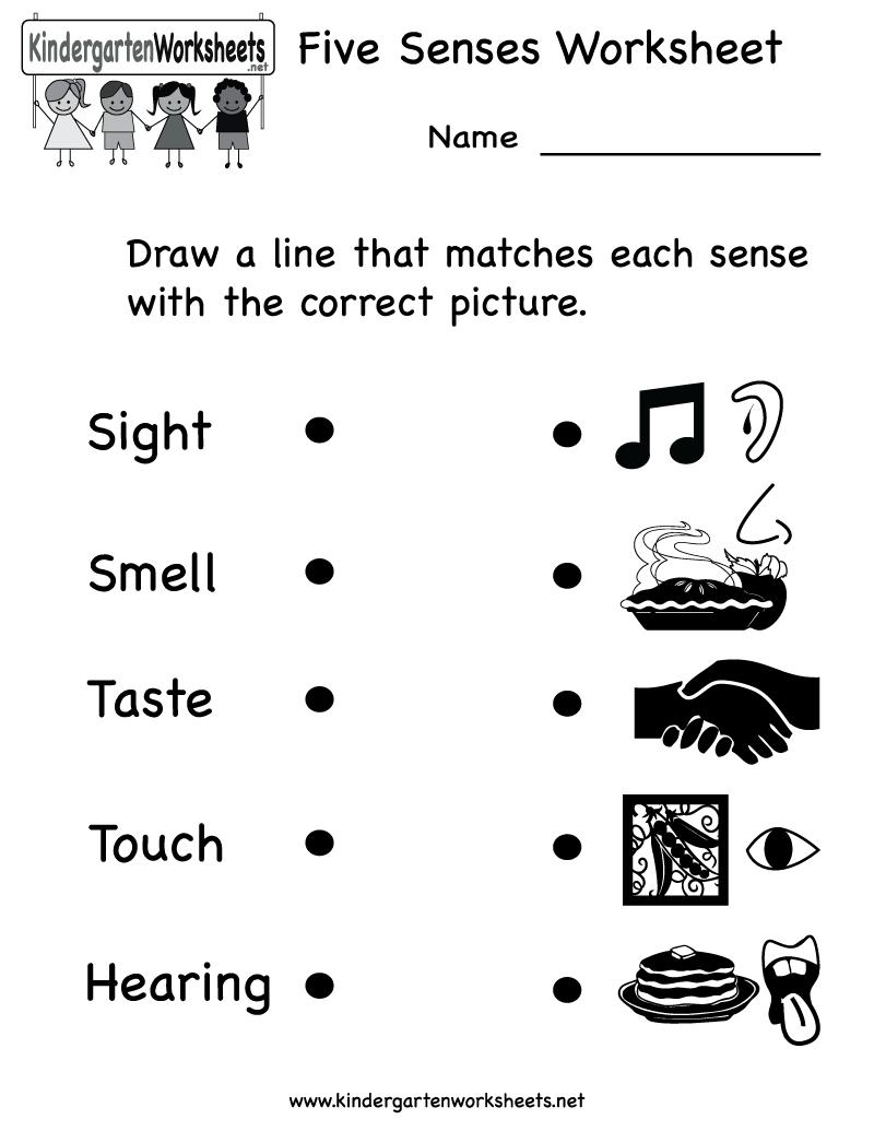 Kindergarten Five Senses Worksheet Printable