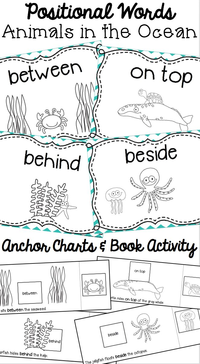 Positional Words Worksheets Kindergarten Worksheets For All