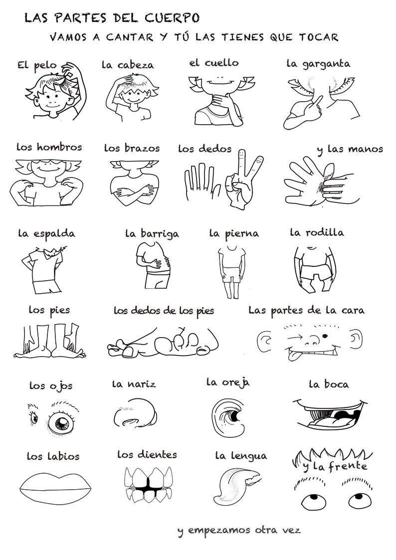 Spanish Language Song About Parts Of The Body