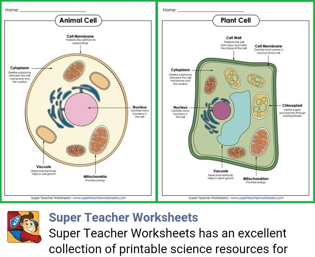 super teachers worksheets grammar. Black Bedroom Furniture Sets. Home Design Ideas