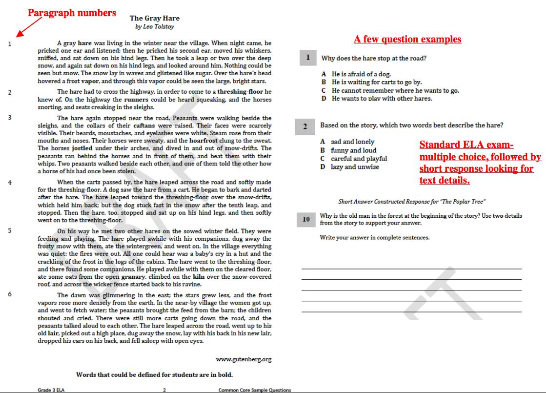 Worksheet  Pearson Education Inc Worksheets  Mytourvn Worksheet