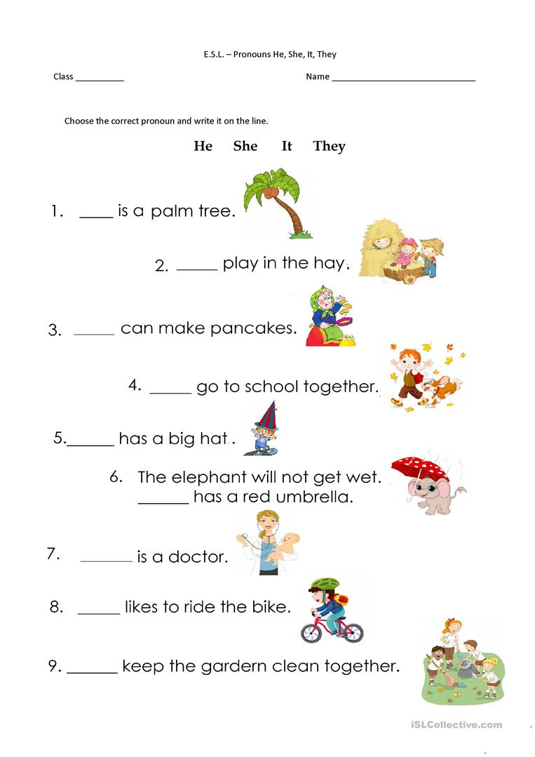 11 Free Esl He She It They Worksheets