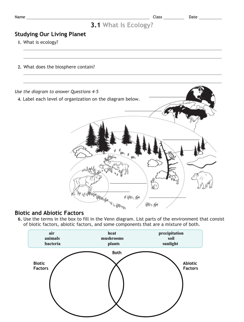 3 Review Worksheet