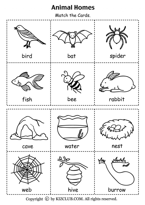 Animal Habitats For Kindergarten Preschoolers Lesson Plans Habitat