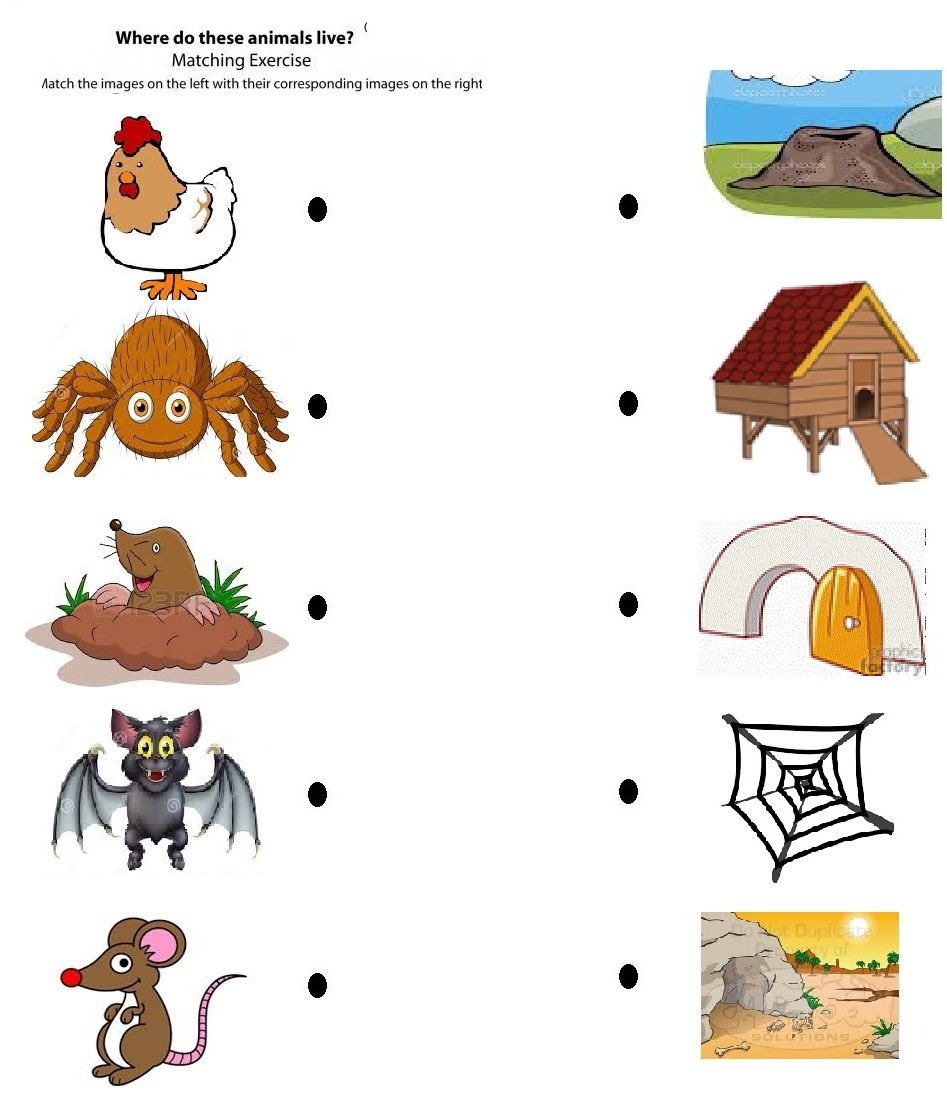 Free Printable Matching Animals To Their Home Worksheet (3