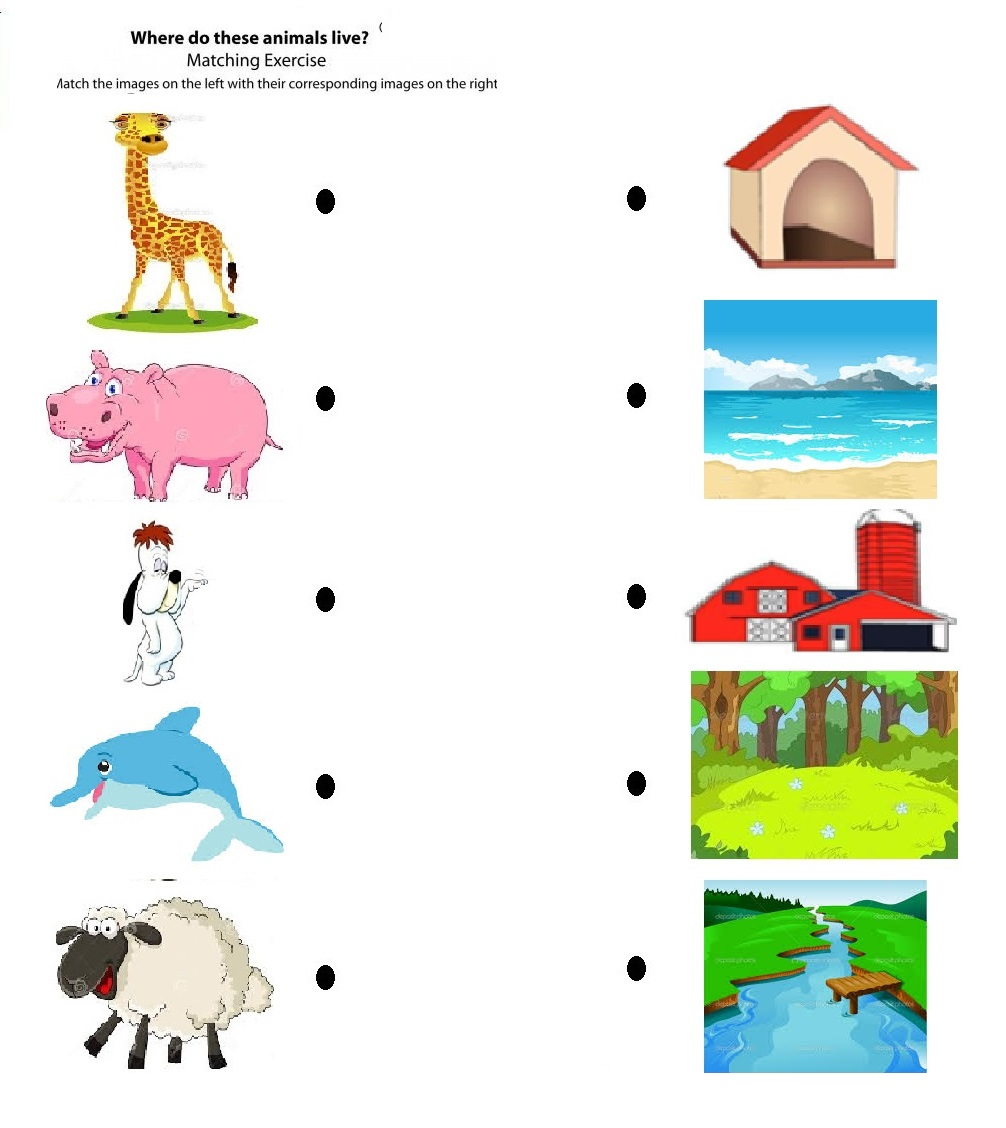 Free Printable Matching Animals To Their Home Worksheet Animalitat