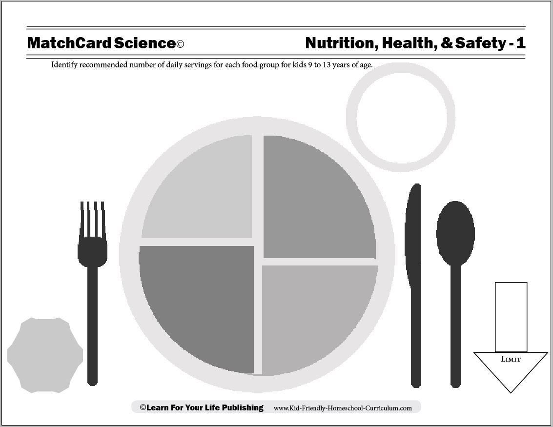 Nutrition Worksheets For Middle School The Best Worksheets Image