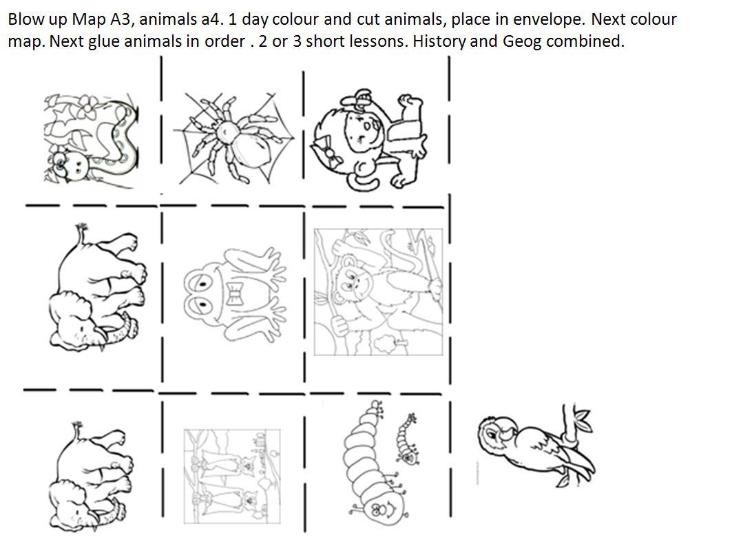 Senior Infants  Monkey Puzzle