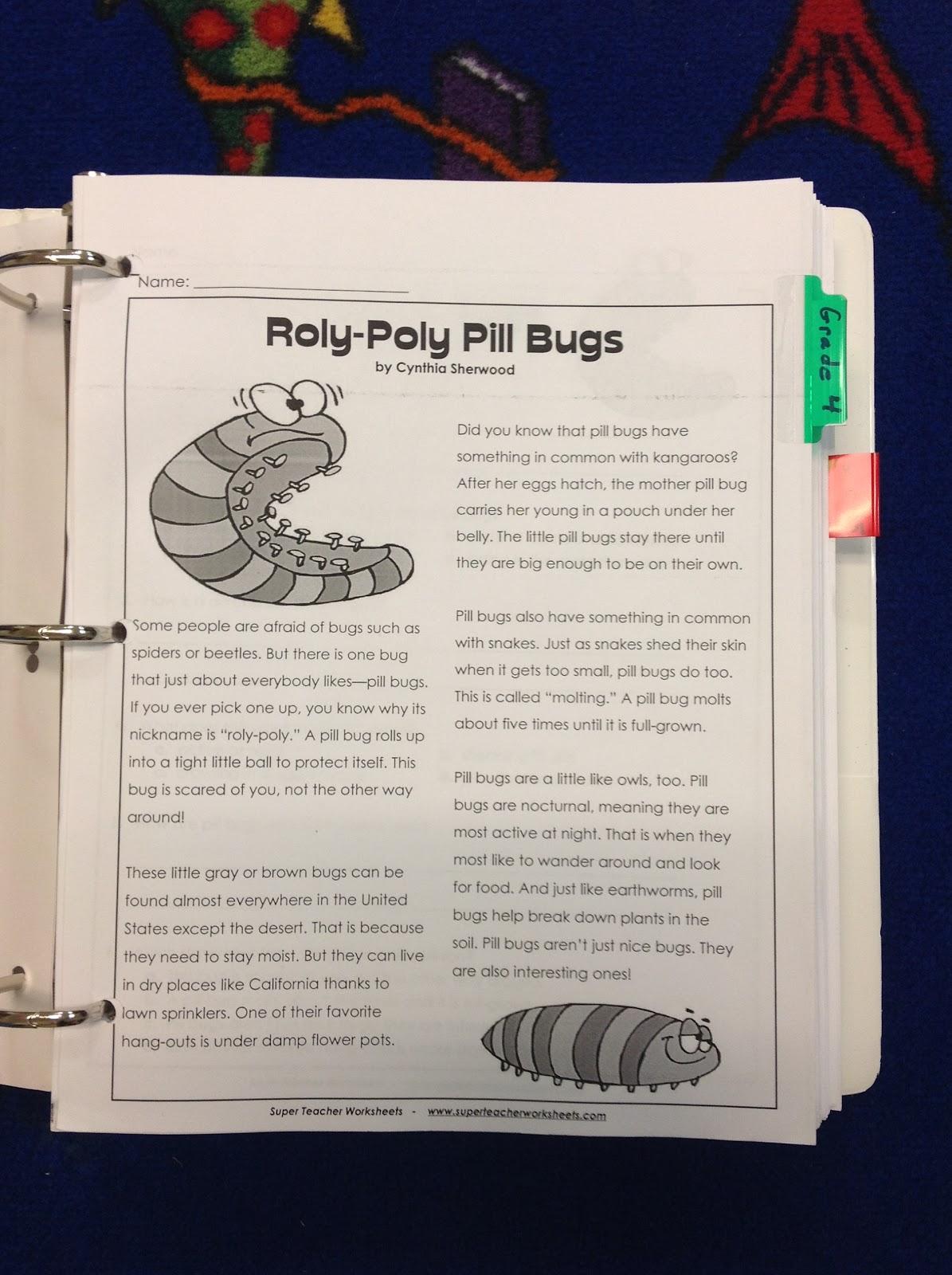 Super Teacher Worksheet Reading Comprehension Worksheets For All