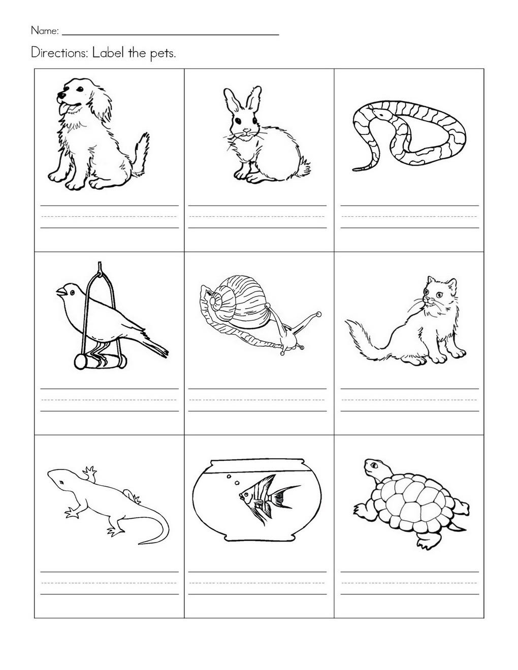 Wild Animals Worksheets Printable Free For Farm Kindergarten Pet