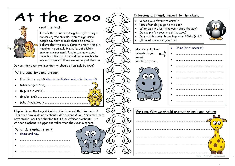 Worksheet  Animal Groups Worksheets Full Screen Classification
