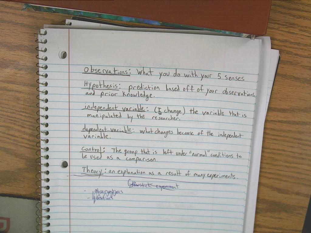 Worksheet  Mythbusters Scientific Method Worksheet  Brunokone