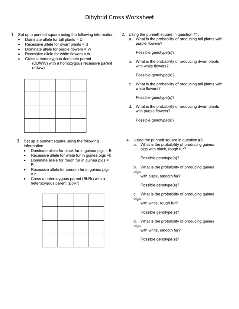 Worksheet  Punnett Square Practice Worksheet With Answers  Grass