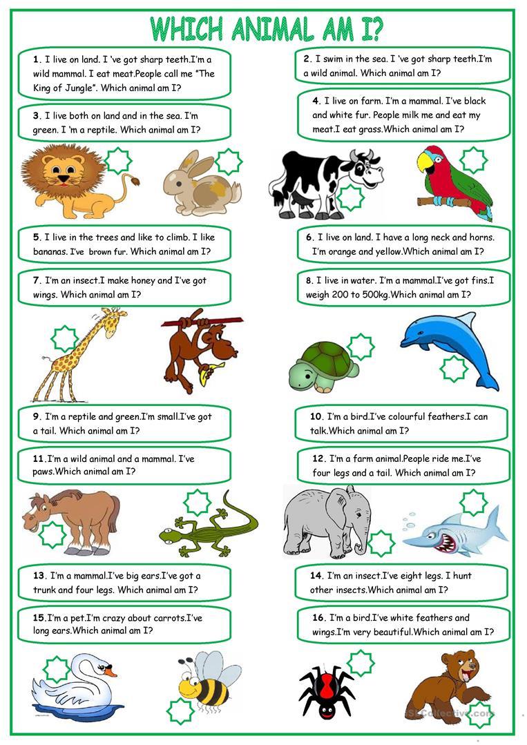 19 Free Esl Describing Animals Worksheets