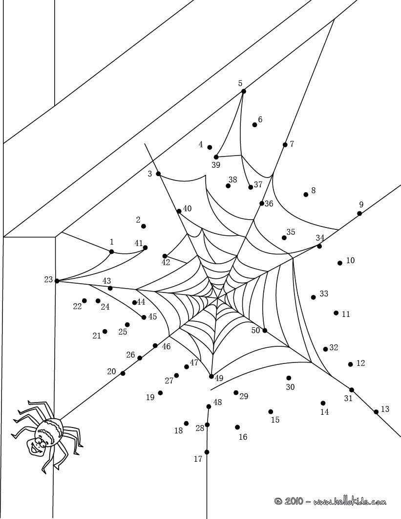 worksheet Spider Worksheets spider web worksheets