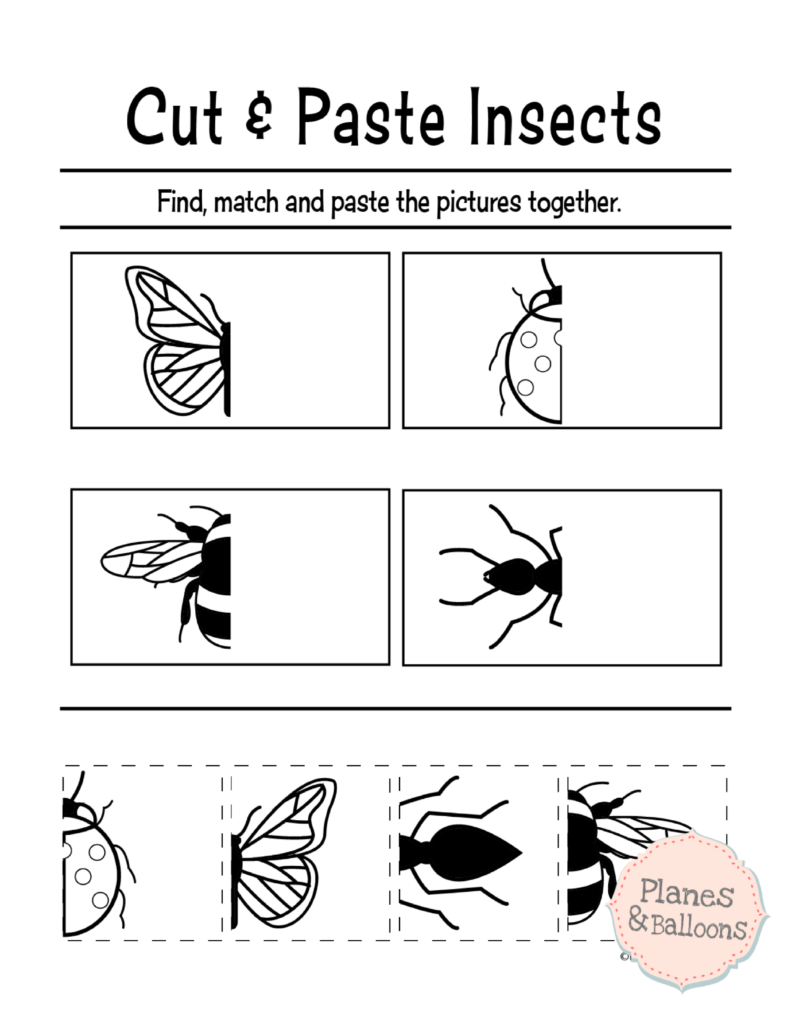 Cut And Paste Worksheets To Complement Typical Preschool Lessons