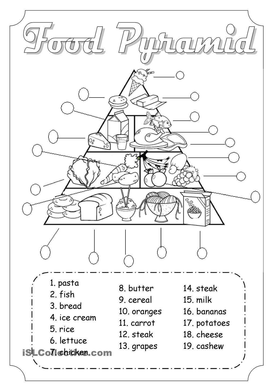 Food Web Worksheets Middle School Worksheets For All