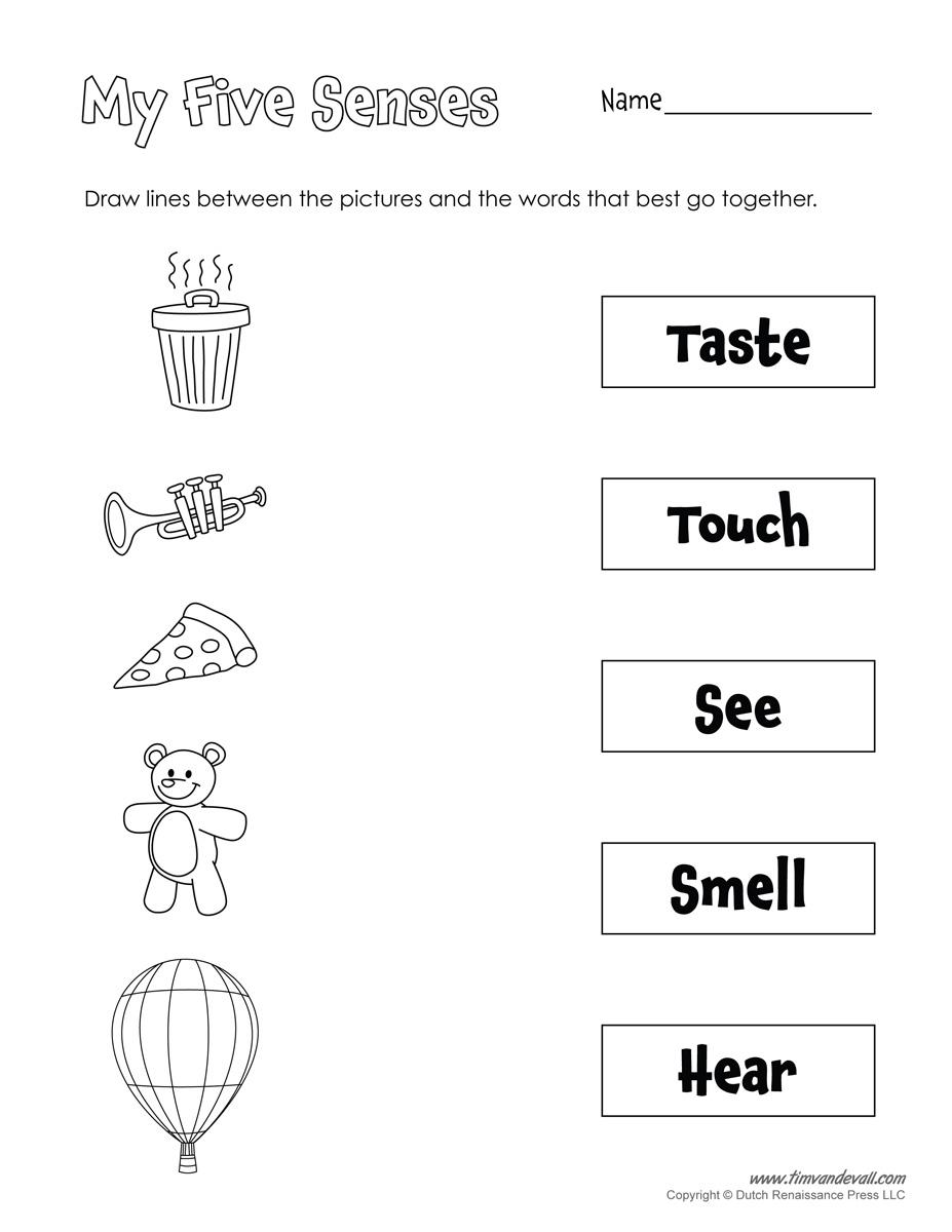 Free Five Senses Worksheets For Kids