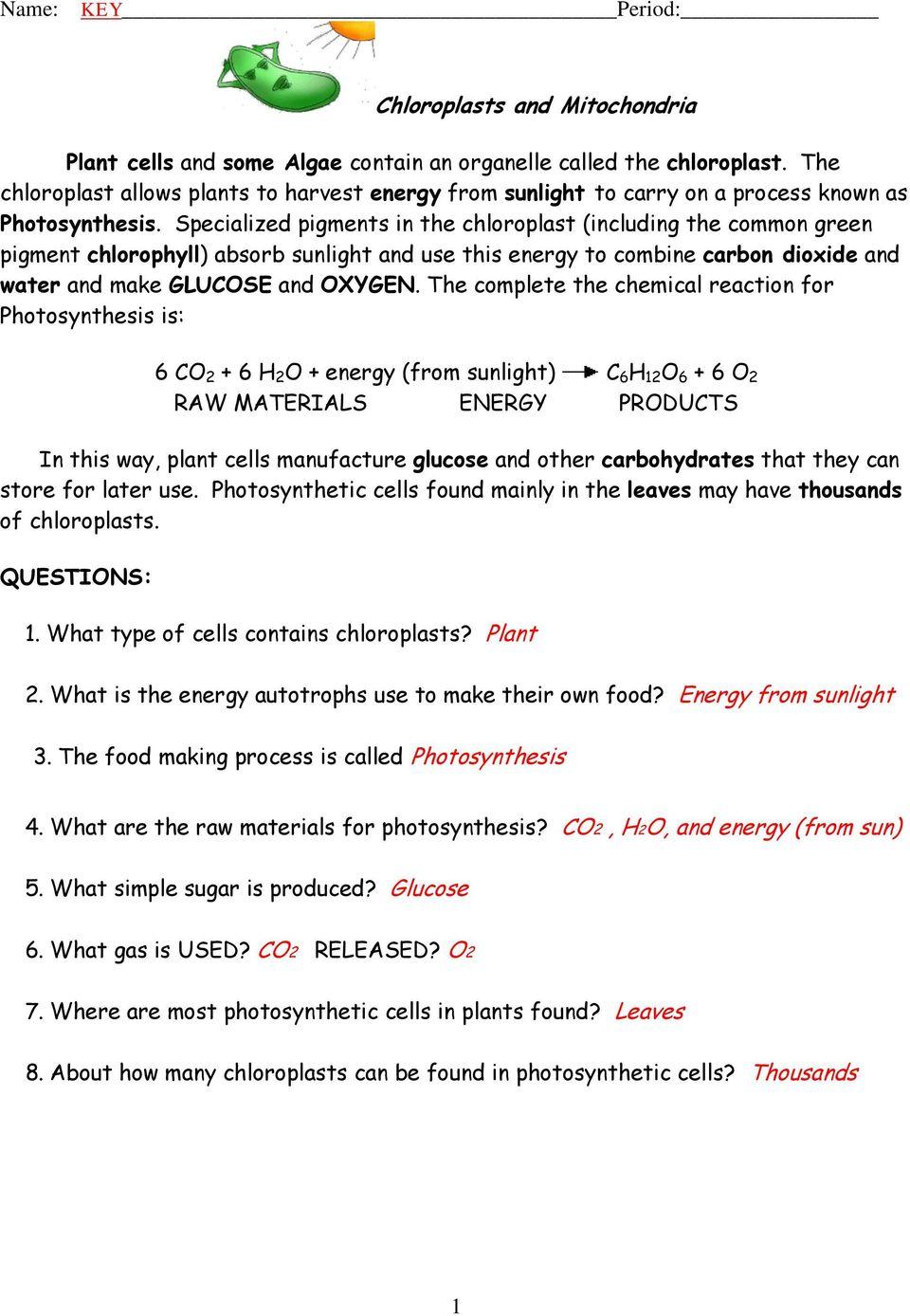 Glucose O2 Co2 H2o Energy