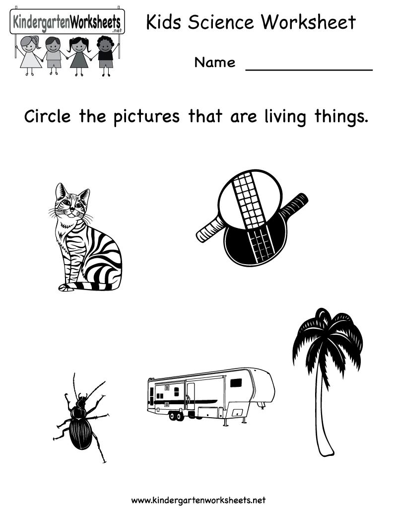 Kindergarten Kids Science Worksheet Printable