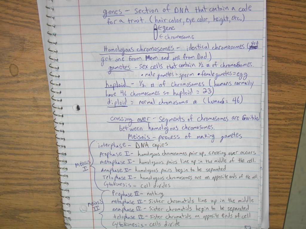 Printables Of Secret Of Photo 51 Worksheet Answers Geotwitter Kids