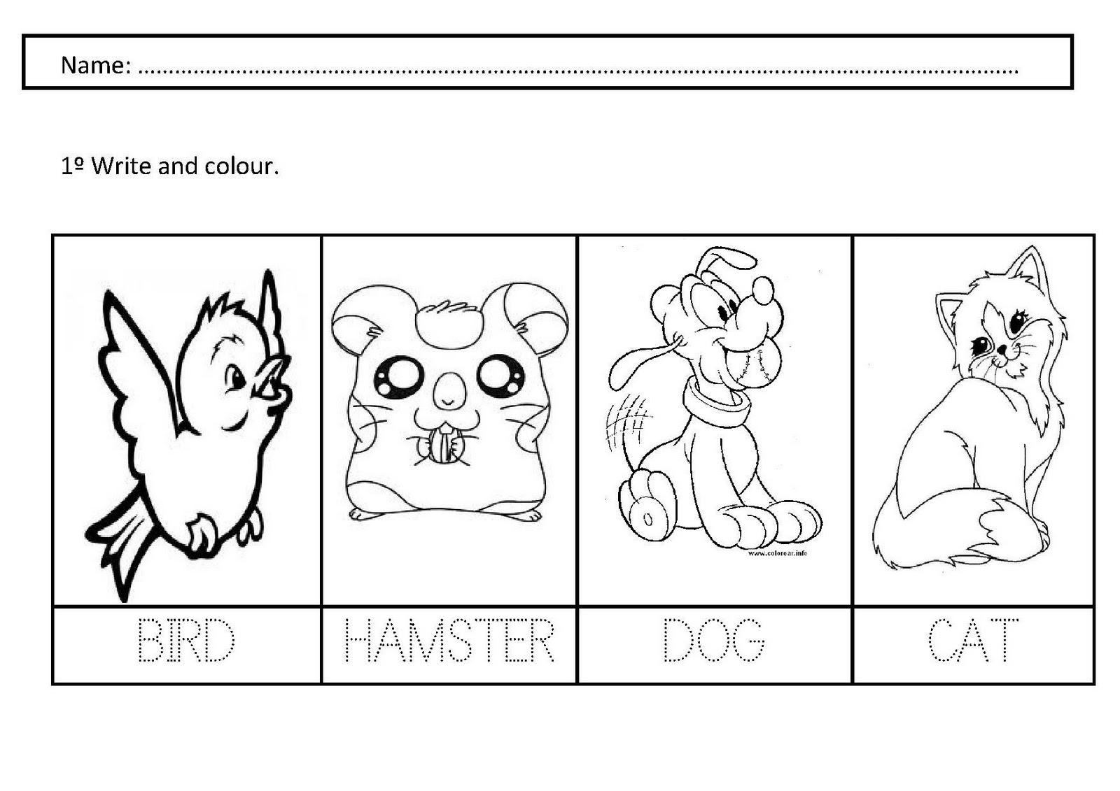 Pet Worksheets Free Worksheets Library