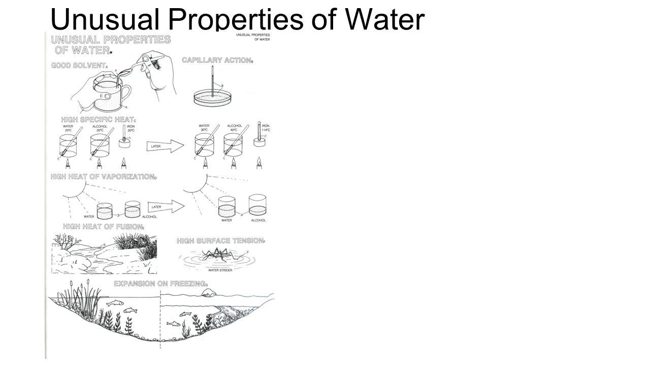 Water Properties Worksheets