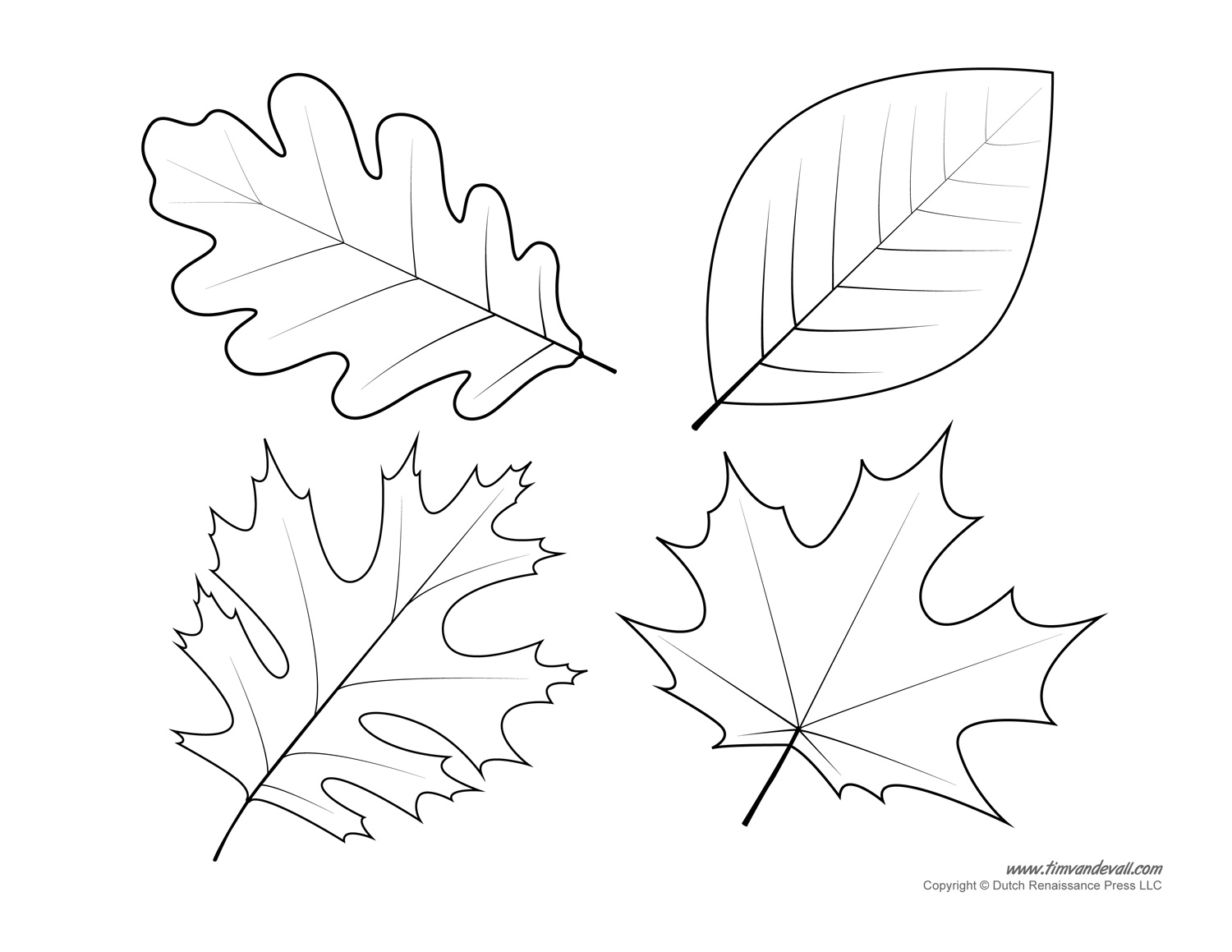 Ultimate Fall Leaf Printables Perspective Printable Leaves To Cut