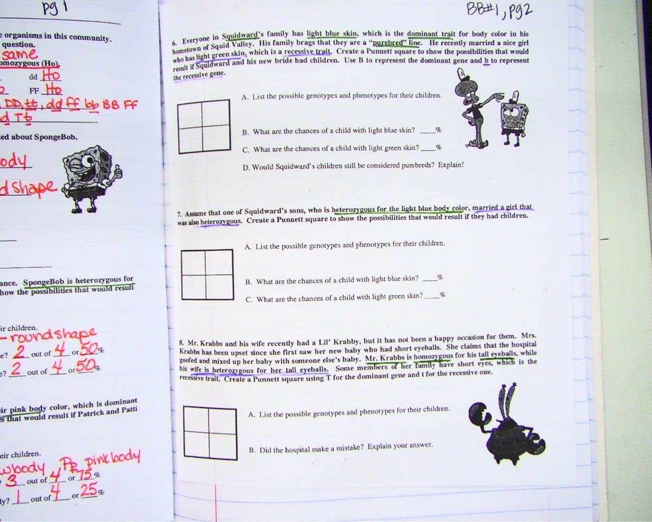 Workbooks » Punnett Square Practice Worksheets
