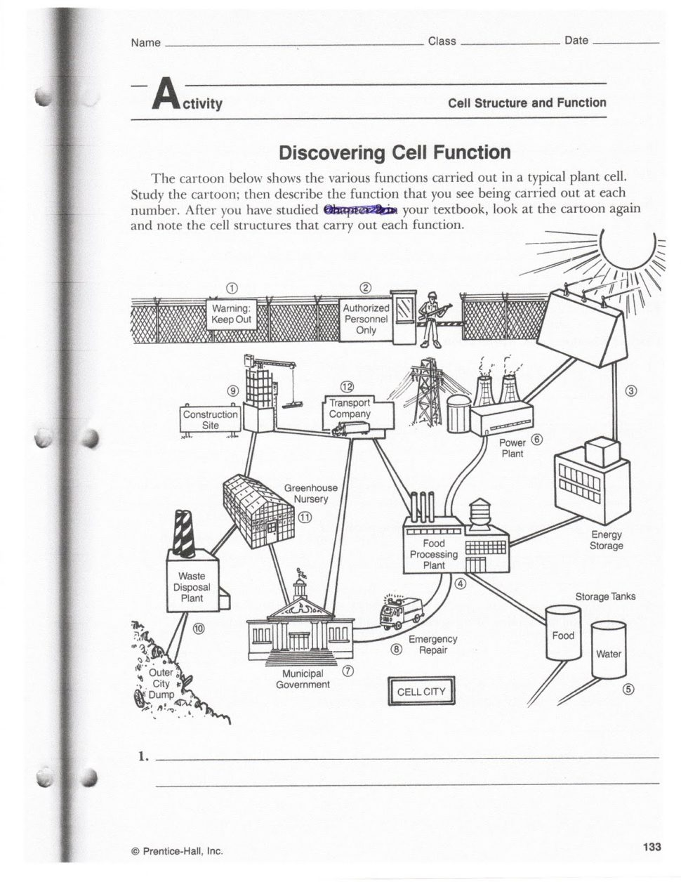 Worksheet  Cell Analogy Worksheet  Thedanks Worksheet For Everyone