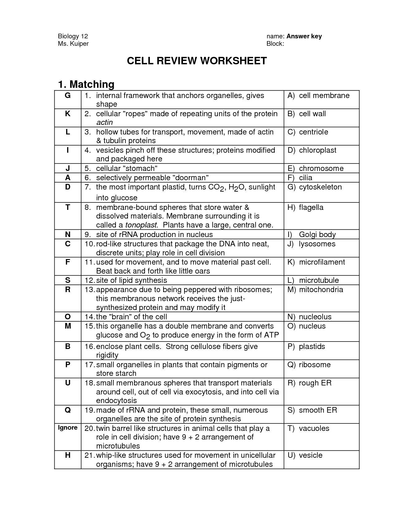 Worksheet  Cell Organelles Worksheet  Thedanks Worksheet For Everyone