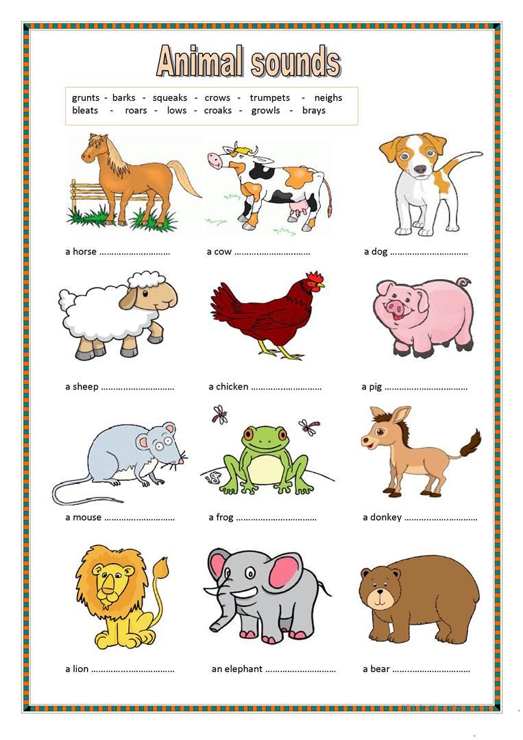 24 Free Esl Animal Sounds Worksheets