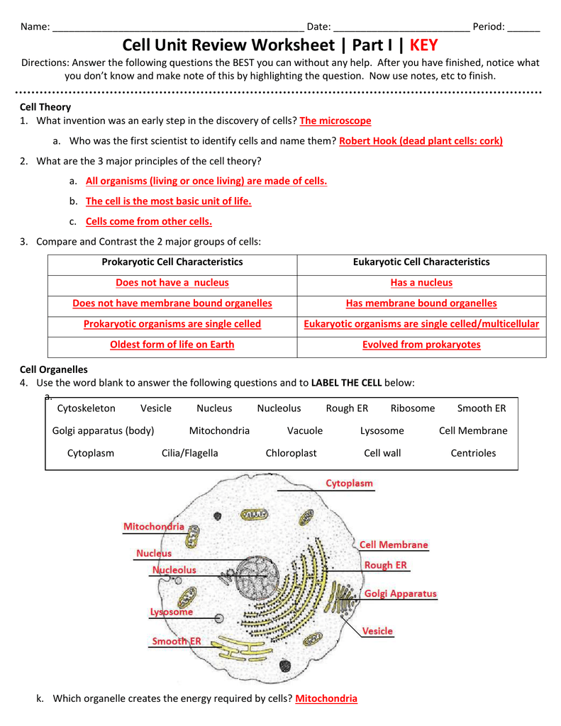 Cell Unit Review Worksheet