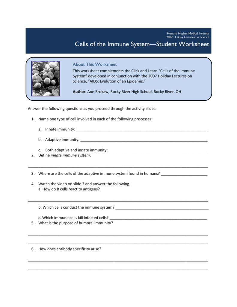 Cells Of The Immune System Student Worksheet Worksheets For All