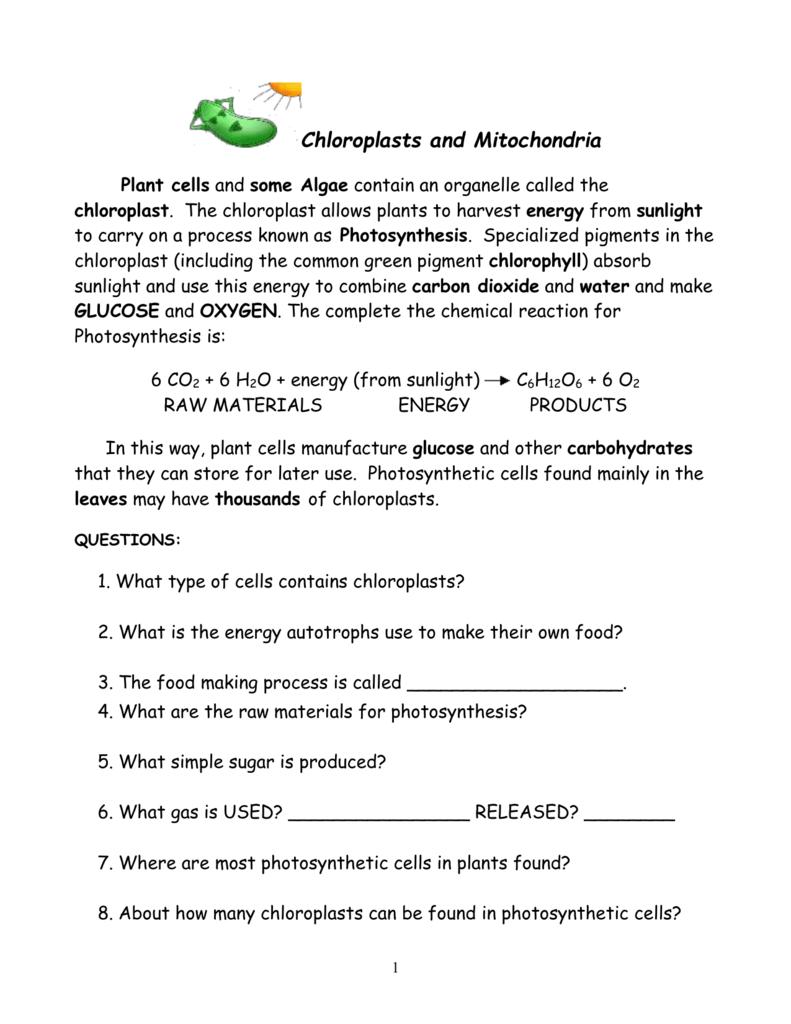 Chloroplasts And Mitochondria (autosaved)